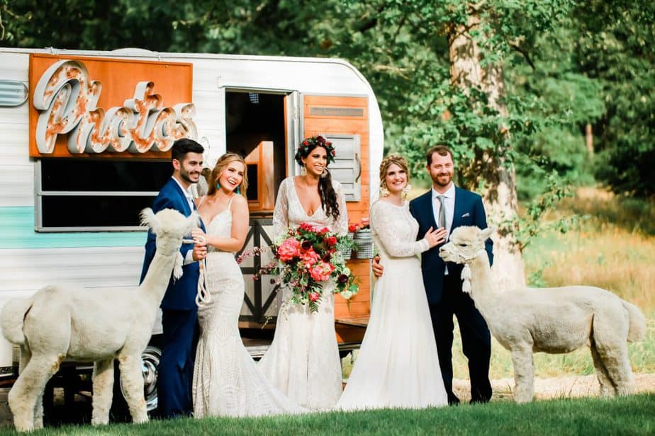 Styled Shoots of Houston with Alpaca Fun